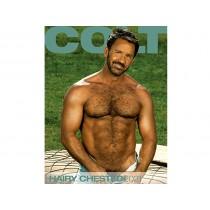 COLT Hairy Chested Calendar - 2021