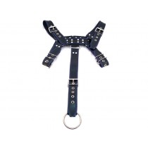 Leather Full Body Harness - Black/Blue